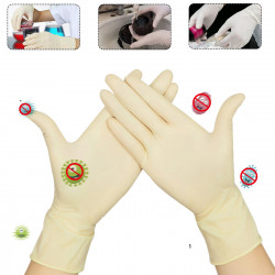 100 Pcs Disposable Latex Gloves Food Grade Picnic Gloves Milky Surgical Protective Gloves Isolate Bacteria Prevent Infection Glove